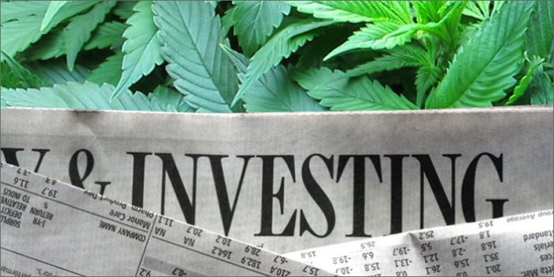 Legal and Medical Cannabis Investment on the Rise - Michael King