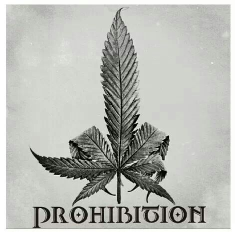 Marijuana Prohibition Turns 80 Years Old - Michael King